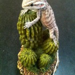 lizard pet taxidermy