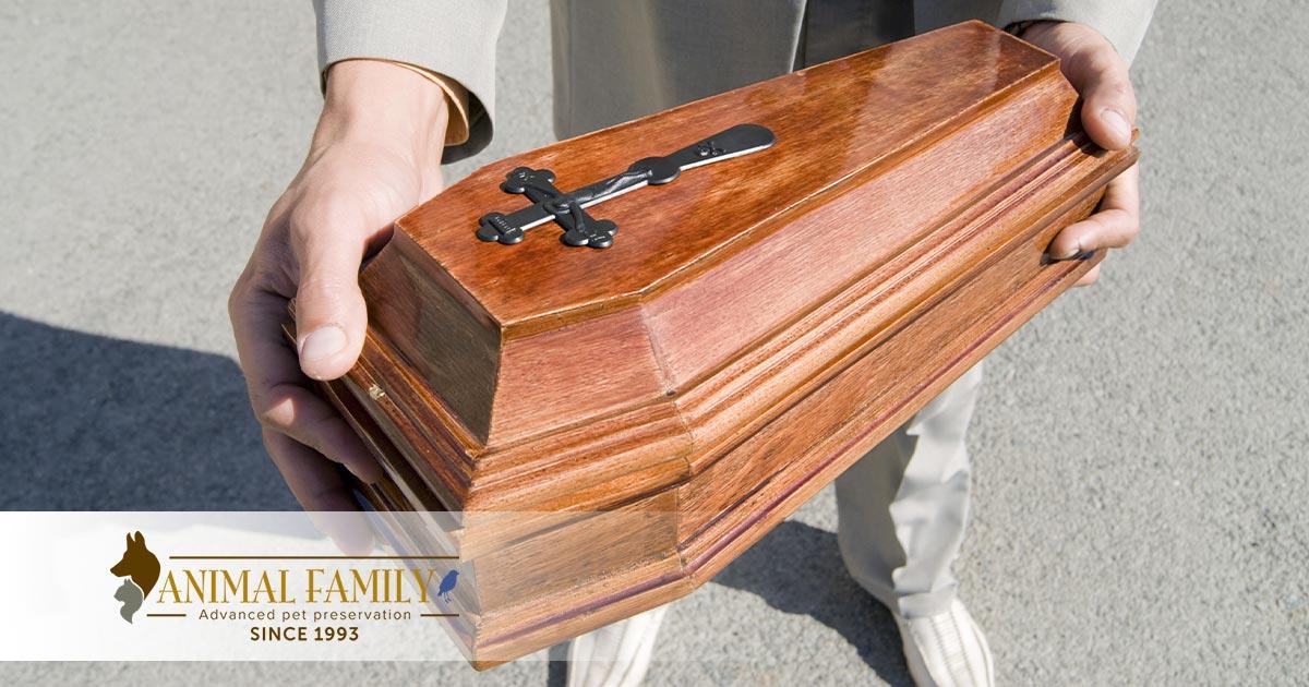 Pet-Cremation-urn