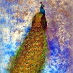 freeze dried peacock